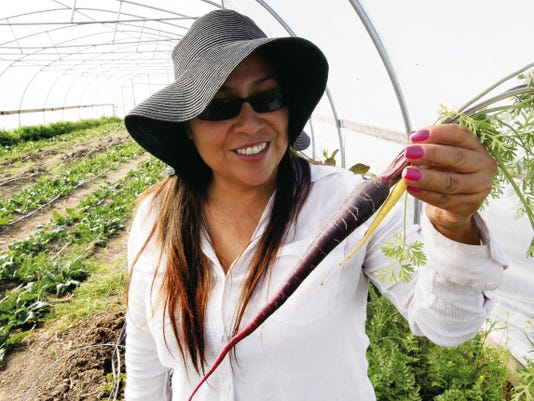 "Cory Cienfuegos, a trainee, looks at a purple carrot she pulled out of the ground in a ""hoop house"" at the Sol Y Tierra Growers Farm at 1612 Highway 478 in Anthony, N.M."