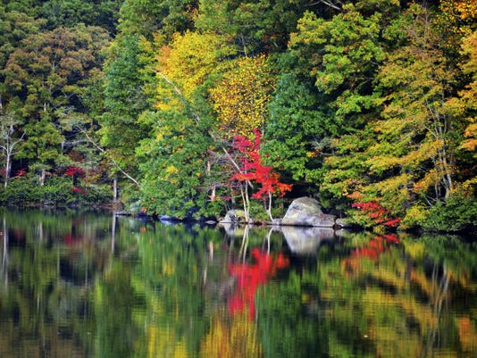 The reflection of leaves on a calm lake is worth the journey to find such views.