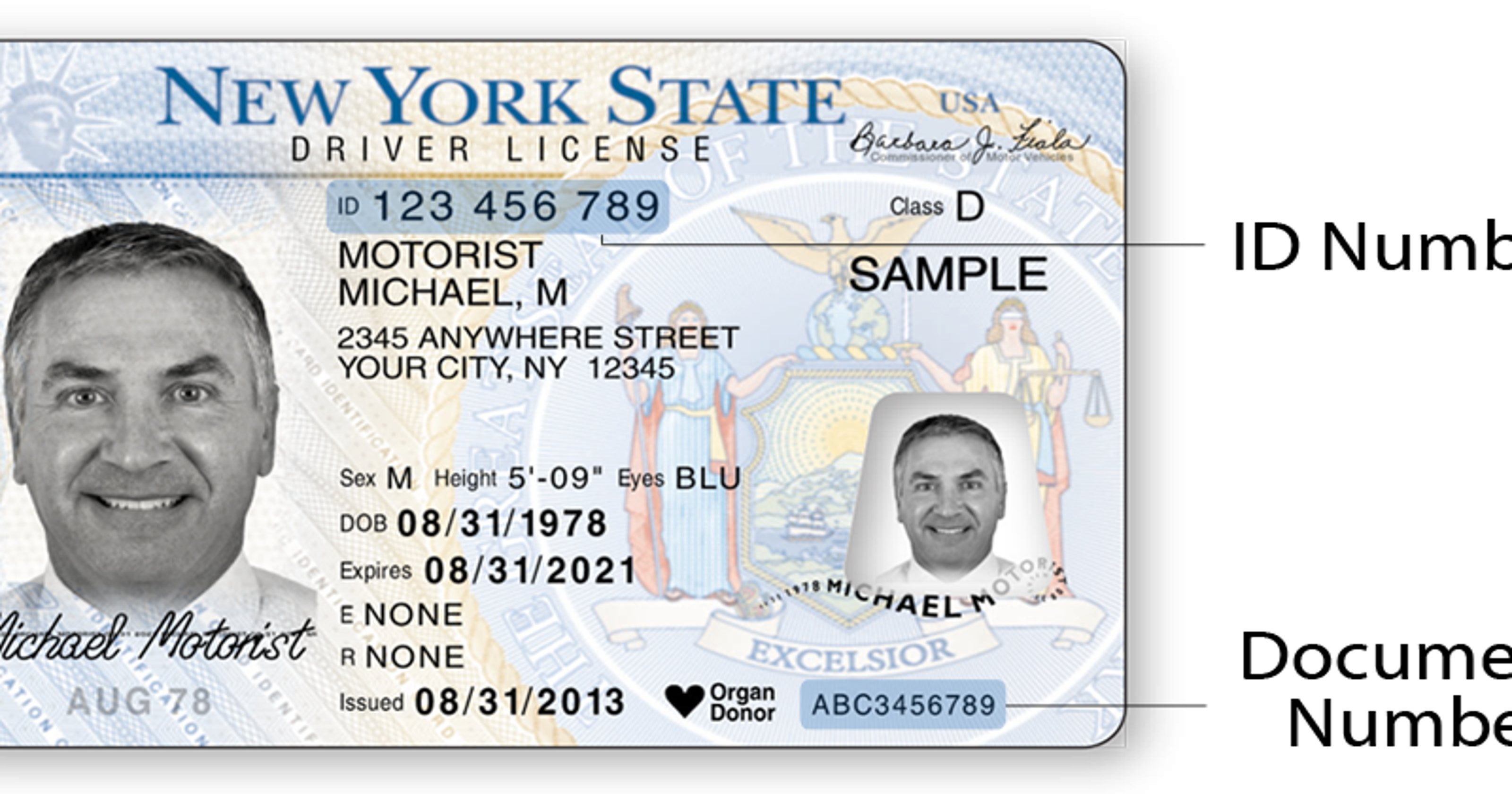Licenses Allows Ny Driver Print-at-home temporary