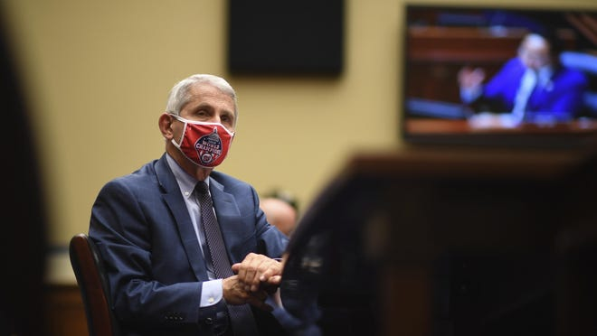 Dr. Anthony Fauci, director of the National Institute for Allergy and Infectious Diseases, listens during a House Subcommittee hearing on July 31 in Washington.