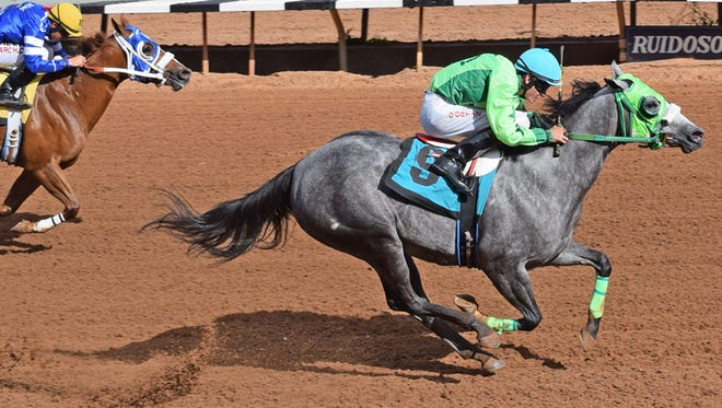 JJ Limited Partnership's Running Dragon, the 1-5 choice in the final trial, pushed her record to three wins from three starts with a dominating one-and-one-quarter length score. She was timed in :17.506 for the 350 yards.