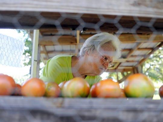 Petal resident Dorothy Fennell looks through her freshly