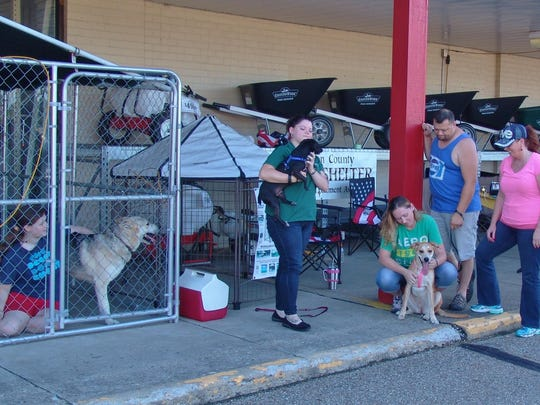 A group of volunteers gather at Tractor Supply Company