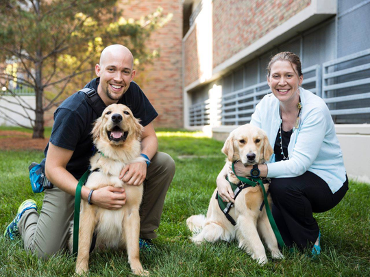 We are so thrilled to welcome Denver (pictured with child life specialist Joel Maier) and Anna (pictured with spiritual care manager Lindsay Bona) to our team! They're the most recent addition to our animal therapy team, which already includes 28 volunteer dogs from Therapaws of Michigan.