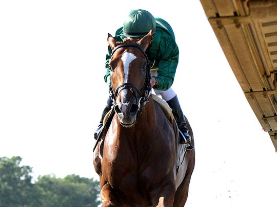 Haskell contender Timeline approaches the wire in winning the Grade 3 Pegasus Stakes at Monmouth Park on June 18.