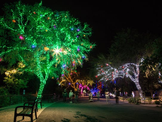 Zoolights At Phoenix Zoo Is Brighter Than Ever