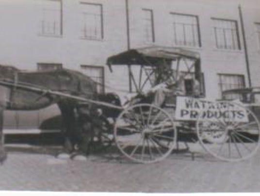 Watkins buggy.jpg