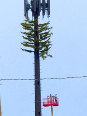 Workers are on their way up to attach some boughs to a tower, the tallest in the village situated at the corner of U.S. 70 and New Mexico Highway 48/37