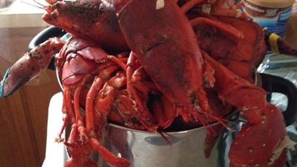 I steamed 16 lobsters for our gang one night. We bought these from a local lobsterman, who is the friend of a friend, who kept negotiating the price down. Doing business with friends is part of the benefit of going home. of going home.