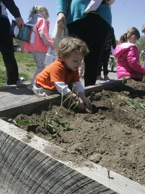 Zane Hylton, 2, is more than ready for spring as he prepares the dirt for this year's plants. Zane got to explore his inner farmer, and decorate it with outer farm dirt, at the Tennessee Master Gardener's booth at the Adventures in Agriculture Saturday at Lane Agri-Park.