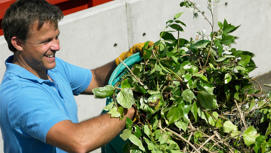 Lebanon schedules yard waste collection