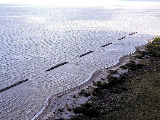 Wetlands31115.jpg