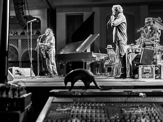 Willie Nelson-Armadil_Huet.jpg