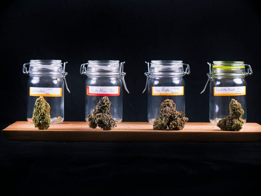 Cannabis buds in glass jars - medical marijuana dispensary concept