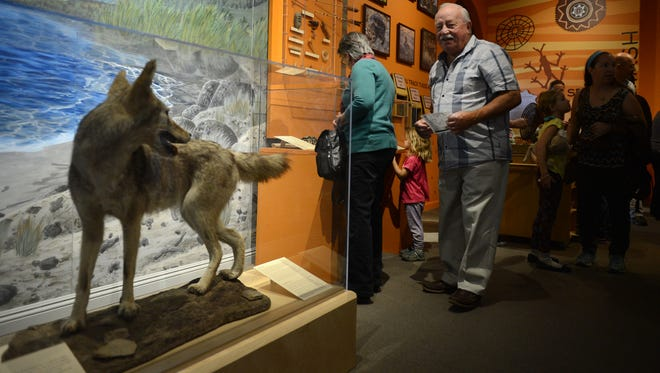Al Gately strolls through the Chumash exhibit at the grand reopening of the Museum of Ventura County on Sunday in Ventura.