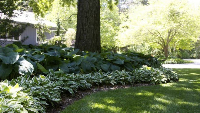 Landmark Landscapes in Sheboygan Falls shares yard preparation tips.