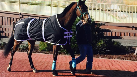 Sunland Park's horse racing season begins Friday.