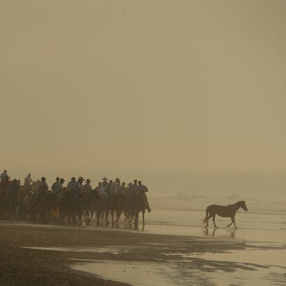 A lone Chincoteague Pony wanders into the surf as Saltwater Cowboys lead the northern herd of Chincoteague Ponies down the beach at Assateague Island, Va. on their way to the pony corral on Monday morning, July 25, 2016. The 91st Annual Chincoteague Pony Swim is Wednesday.