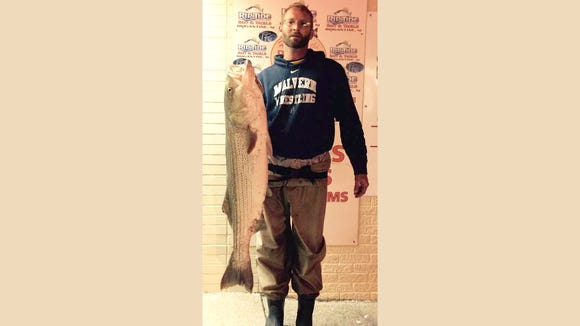 """Joe C. with a 33.5 pound 47"""" striper that he caught off the Brigantine NJ surf last year at this time."""