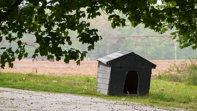 View of the doghouse next to the home where 4-year-old Kasii Haith was killed and his pregnant mother, Kyeisha Haith, was injured by three pit bulls that attacked them Wednesday at a friend's home in Kent County.