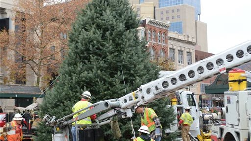 """Public Works Dept. workers put the Reading Xmas Tree in place on Tuesday, Nov. 10, 2015 in Reading, Pa. The official Christmas tree in Reading will be a pleasingly plump, 25-foot-tall white fir.   Last year's tree was a sad-looking Norway spruce that drew immediate comparisons to the sparse sapling in """"A Charlie Brown Christmas."""""""