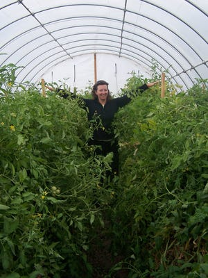 Leslie Allen stands among hoop house tomatoes at Lattin Farms in Fallon.
