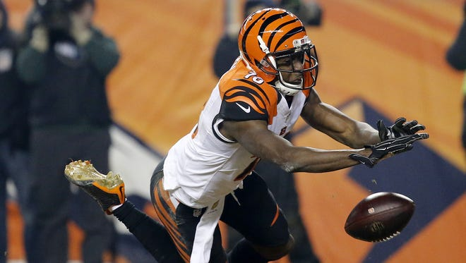 Cincinnati Bengals wide receiver A.J. Green dives for a pass but comes up short in Denver. He admitted to stopping on the route.