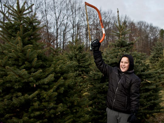 Joshua Ball, 12, of Lindenhurst, Ill., holds a saw above his head and yells as he finds the perfect tree with his family Saturday, November 28, 2015 at Dunsmore Blue Spruce Christmas Tree Farm in Smith's Creek. Ball was visiting grandparents in Fort Gratiot.