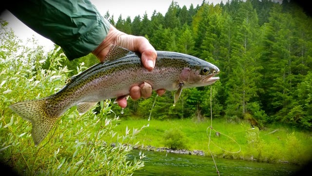 Santiam Flycasters are hosting a meeting March 10 in Salem.