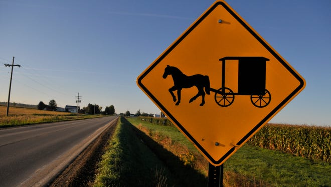 A sign warns motorists of horse-drawn vehicles on Maple Valley Road in Maple Valley Township near Brown City.