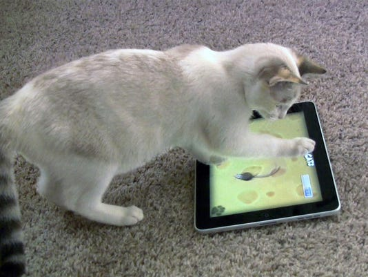 Pets-Apps for Cats