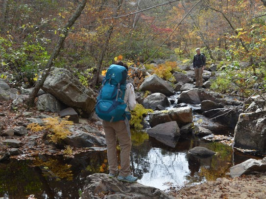 Hikers explore the Pickle Creek Trail at Hawn State