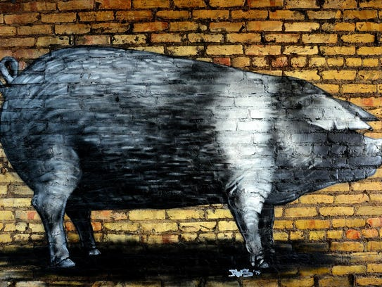 A mural of a British saddleback boar is painted on