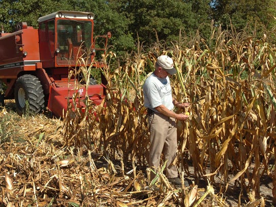Climate change is ushering in more extreme weather, with rising probabilities for hardships such as the drought of 2008, which ravaged corn crops in Delaware. Days with 100 degree or higher temperatures could rise to a dangerous 15 to 30 days a year, compared with less than once annually during the past century.