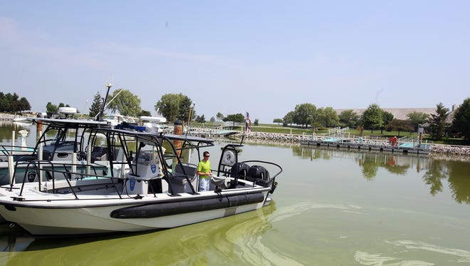 Drew Smercina, 21, of Elmore, Ohio, is an intern with the Ohio Department of Natural Resources' Watercraft division. He looks out over a Maumee Bay inlet filled with algae Monday, Aug. 4, 2014.