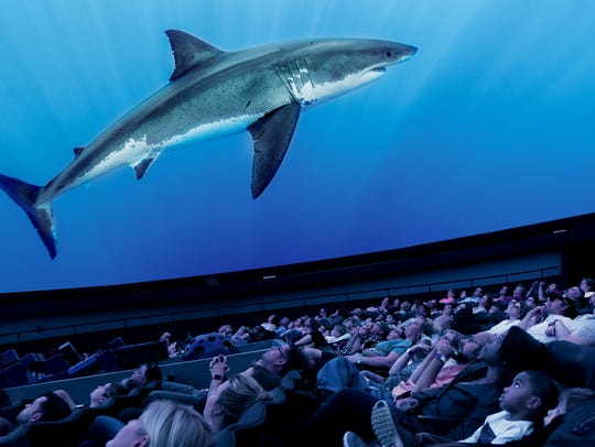 Great White Shark planetarium show (will be showing