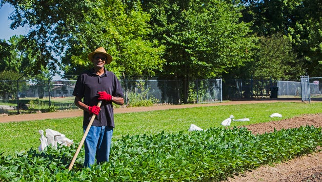 """Army veteran Ed Carlock, 70, cuts the grass, fillsgarden beds, plants seeds, weedsand waters – """"Just about everything you do in farming."""" – at the urban farm at 2226 Ball Road."""
