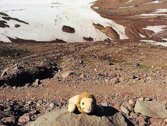 Mountain Rescue Stuffed Lion