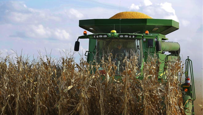 National Agriculture Statistics Service figures show that farmers are expected to produce 549 million bushels of corn this year.