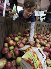 Apple festivals offer plenty of activities and treats for kids and their families.
