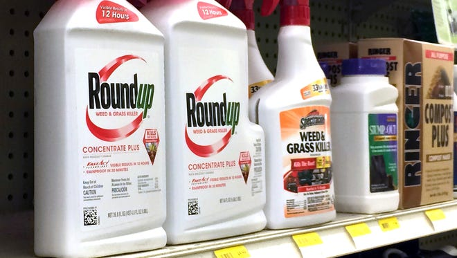 In this Thursday, Jan. 26, 2017, photo, containers of Roundup is seen on a shelf with other products for sale at a hardware store in Los Angeles.