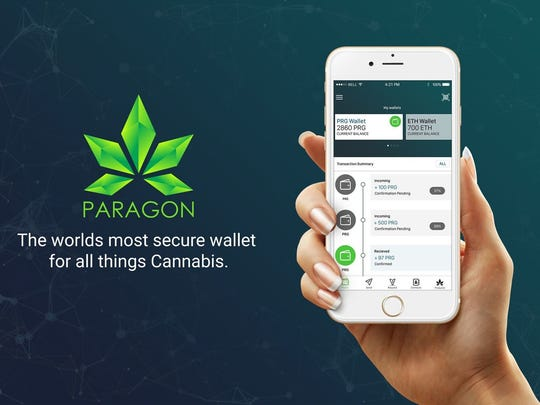 Jessica VerSteeg's new company Paragon aims to make it easier for those in the cannabis industry to pay for transactions.