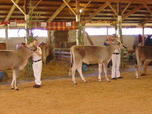 Dairy show 1