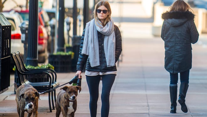 A bundled-up dog owner walks her two dogs down Gay Street in downtown Knoxville on Wednesday, January 3, 2018.