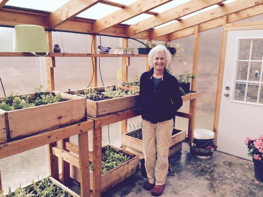 Under Shari Johnson's guidance, the greenhouse at the Addison County Parent Child Center provides fresh greens for the center's cafeteria.