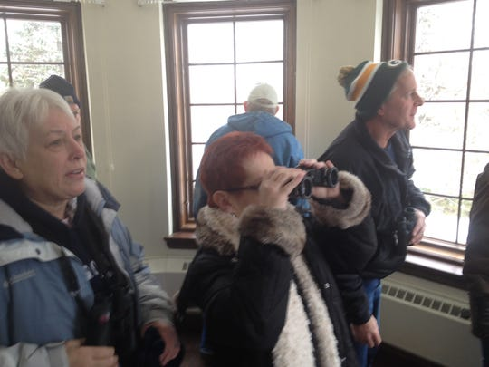 Eagle watchers at Fox River Environmental Education Alliance (FREEA) watch as three bald eagles sweep over the viewing room along the river. ROB ZIMMER/Post-Crescent Media.