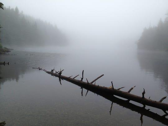 Vermont's highest elevation trout stream, Sterling Pond.