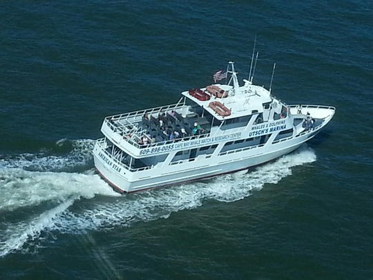 The American Star is the Cape May Whale Watch's 90-foot long boat that can hold 150 passengers and is set up for non-obtrusive yet up-close viewing of whales and dolphins.