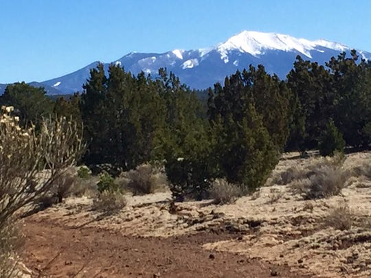Humphreys Peak rises in the distance on the return