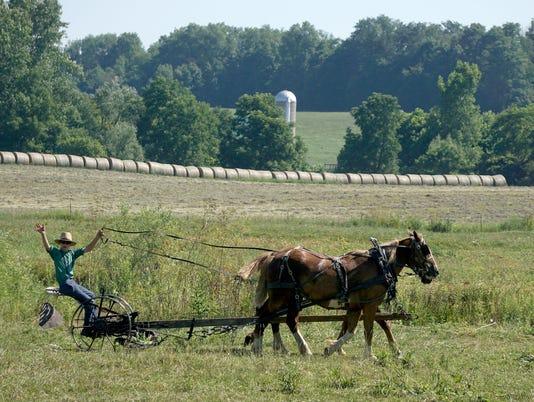 Amish-wild-art.jpg